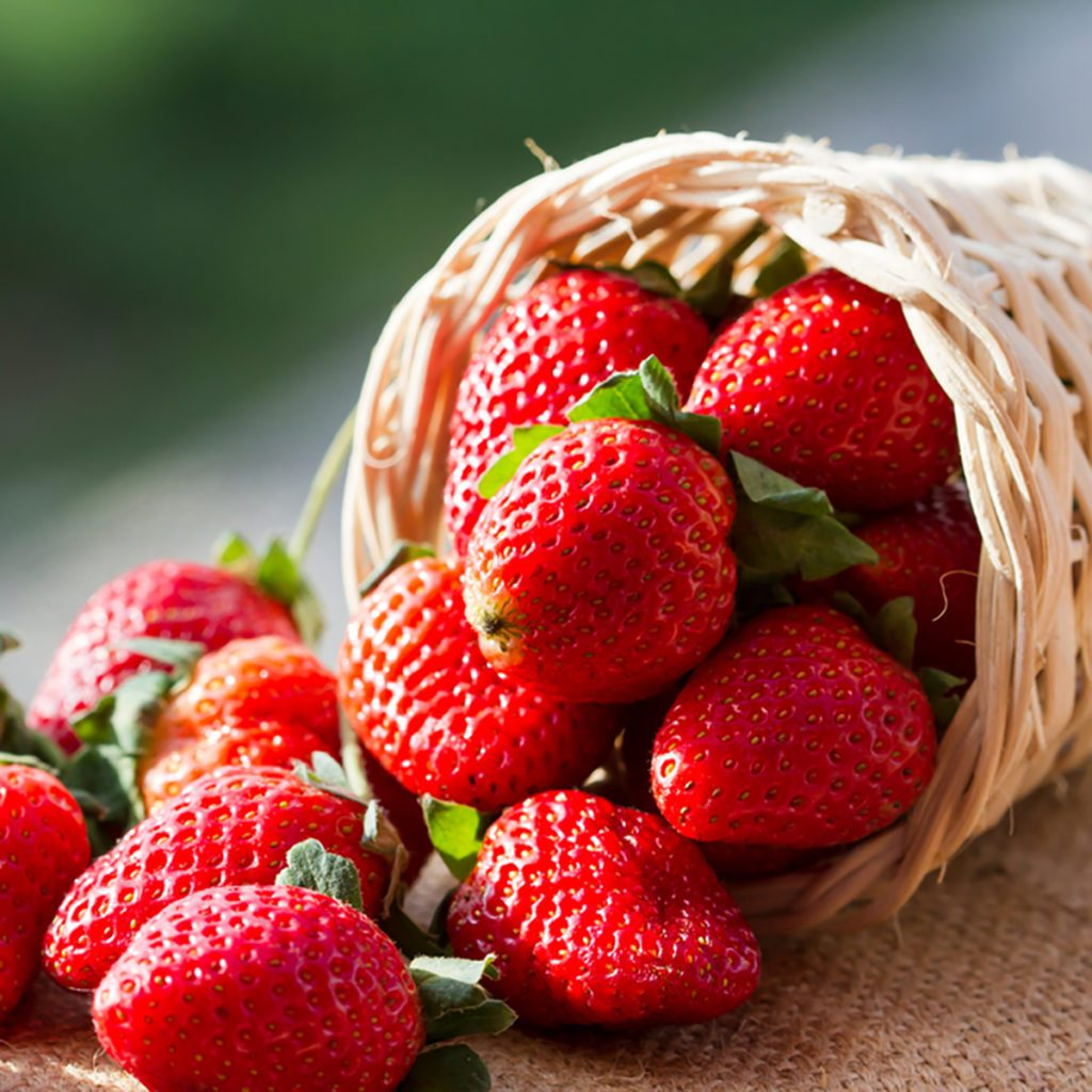 strawberries in natural background; Shutterstock ID 165452462; Job (TFH, TOH, RD, BNB, CWM, CM): Taste of Home
