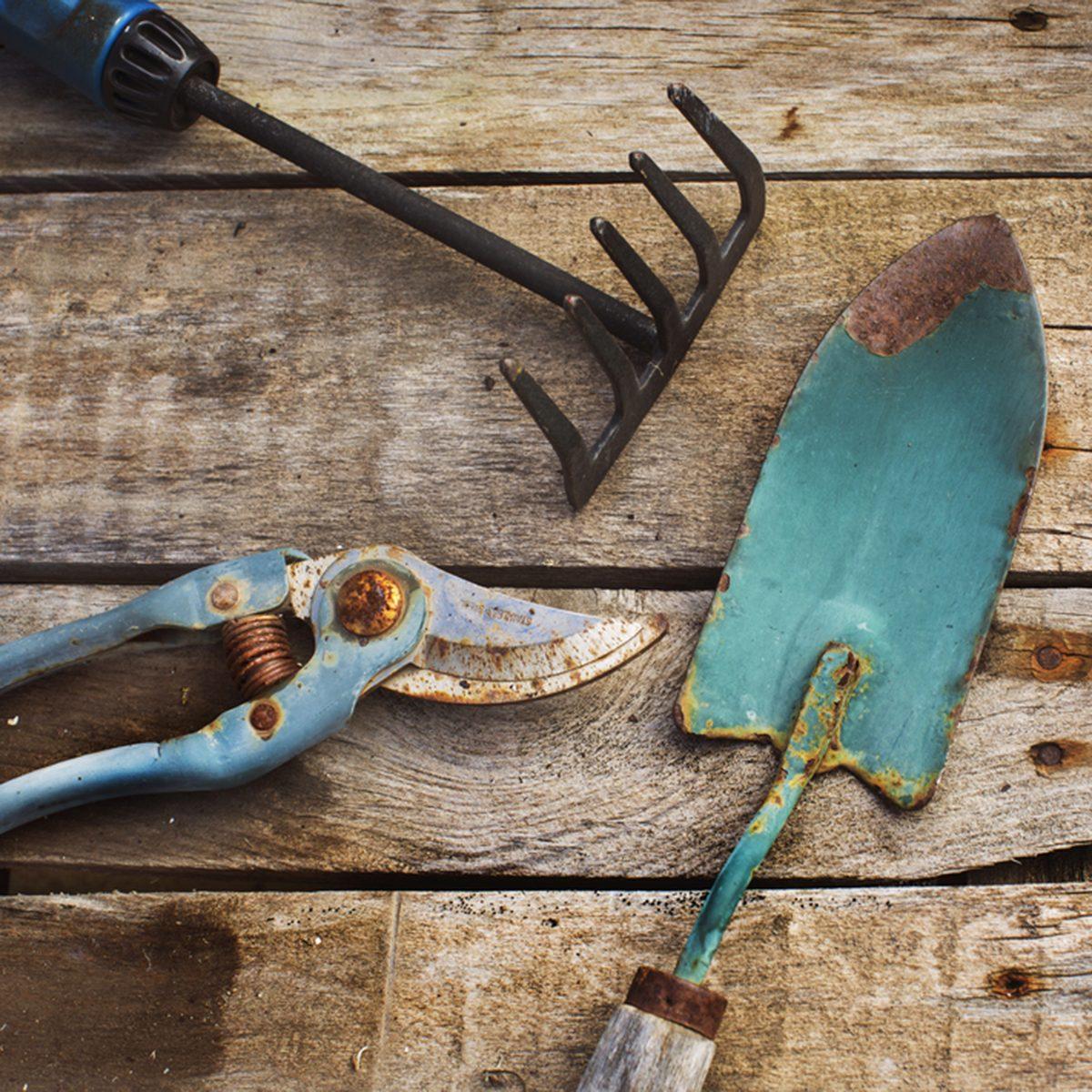 Old garden tools; Shutterstock ID 526126981