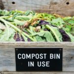10 Things You Didn't Know You Could Compost