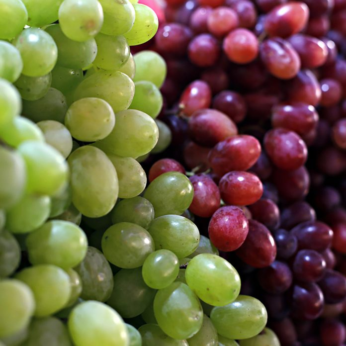 Healthy fruits Red wine grapes background/ dark grapes/ blue grapes/wine grapes,Red wine grapes background/dark grapes,blue grapes,Red Grape in a supermarket local market bunch of grapes ready to eat;