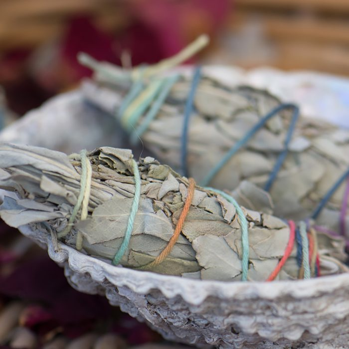 White sage smudge stick (Salvia apiana) in a seashell.