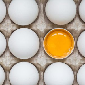 The True Difference Between Jumbo and Large Eggs