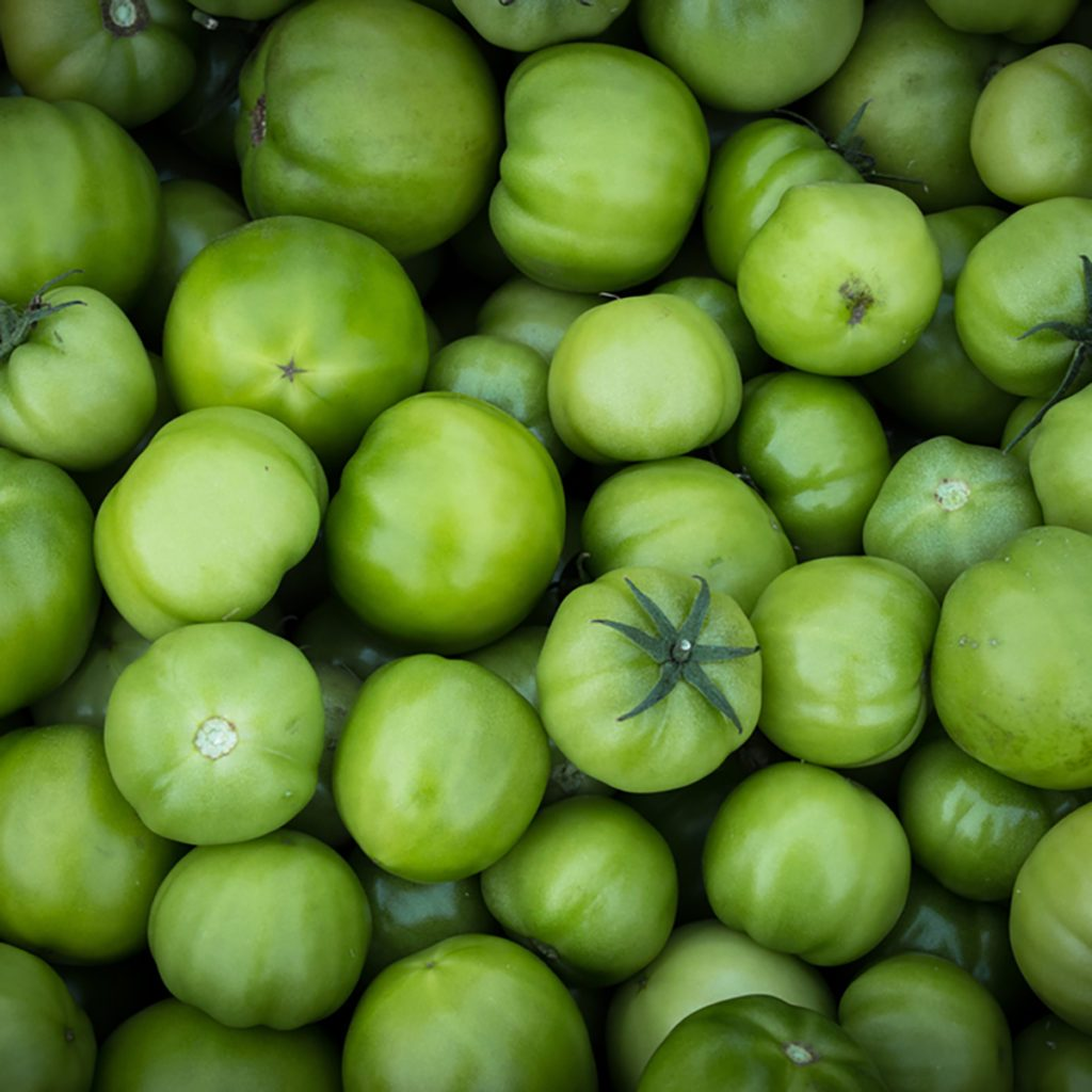 Pile of raw natural green tomatoes