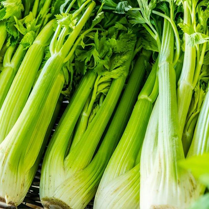 Heads of celery. Close-up