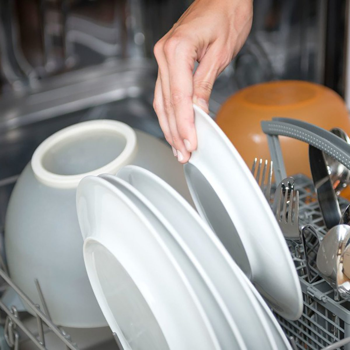 person loading plates in dishwasher