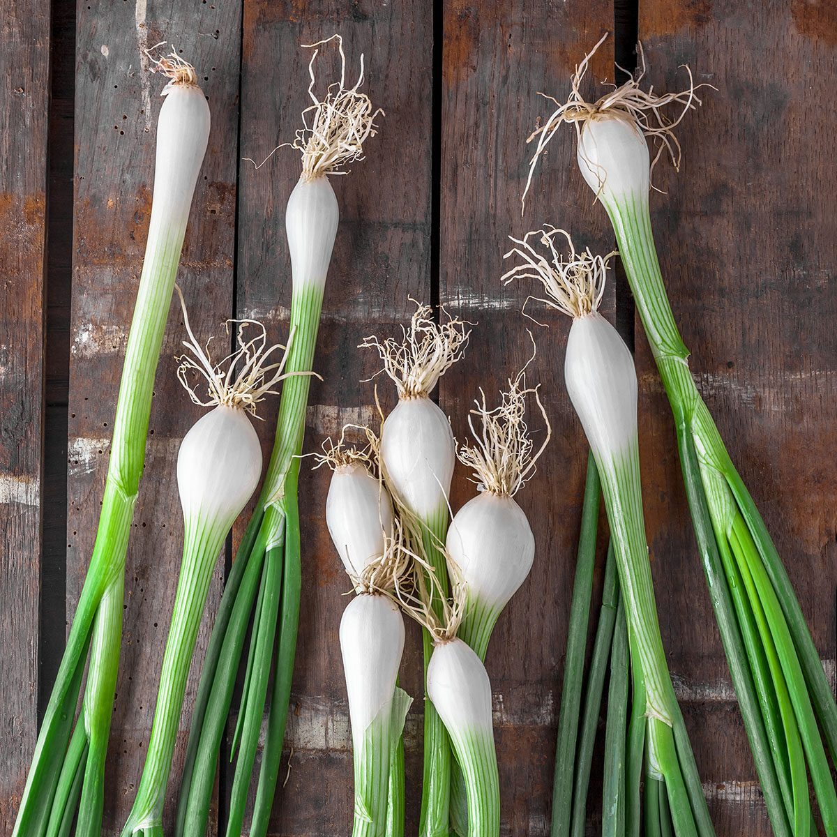 Green onions overhead group on old rustic wooden table in studio