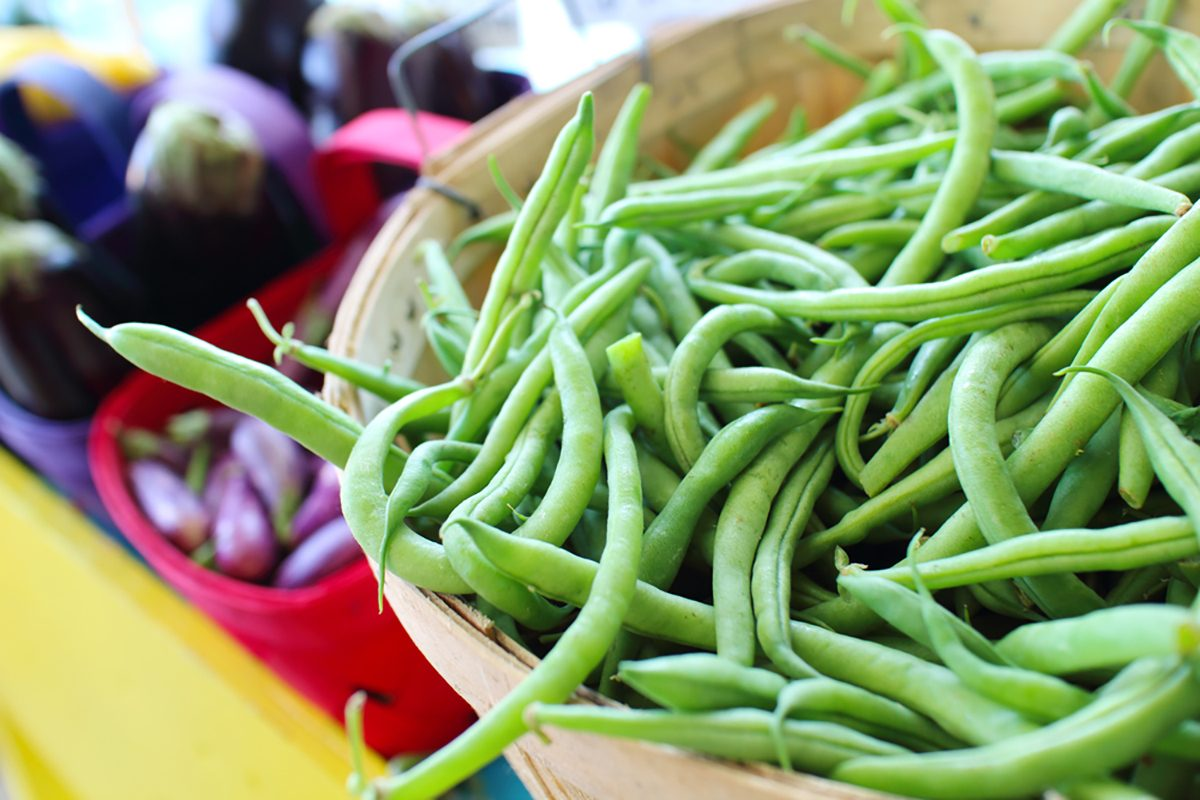 Bushel Baskets of Fresh Green Beans