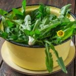 How to Cook Dandelions — And Why You Want To