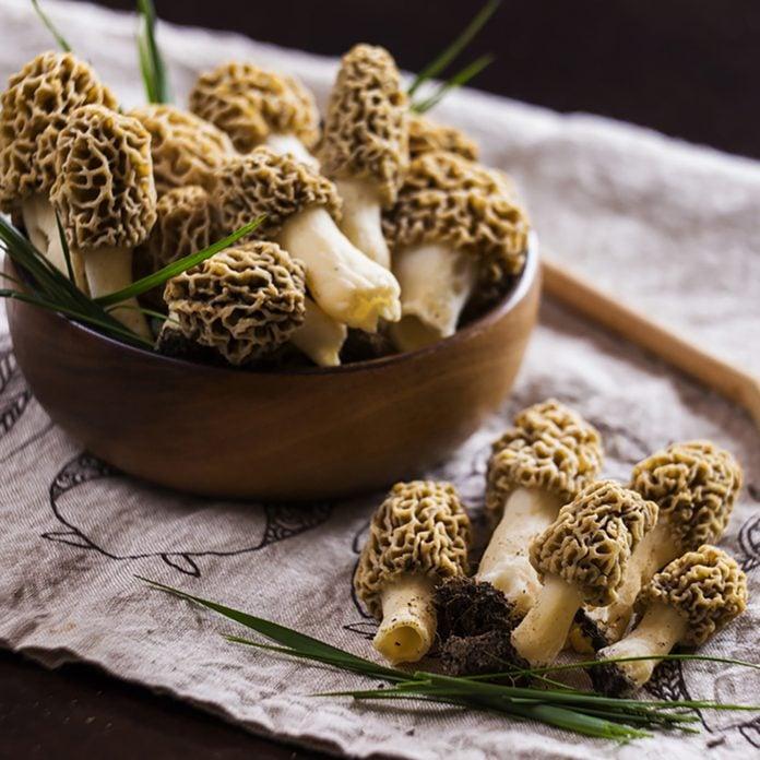 Fine cuisine, Morchella esculenta, (commonly known as common morel, morel, yellow morel, true morel, morel mushroom)