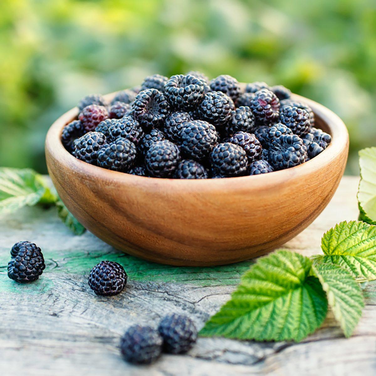 Black raspberries in a bowl in the garden.