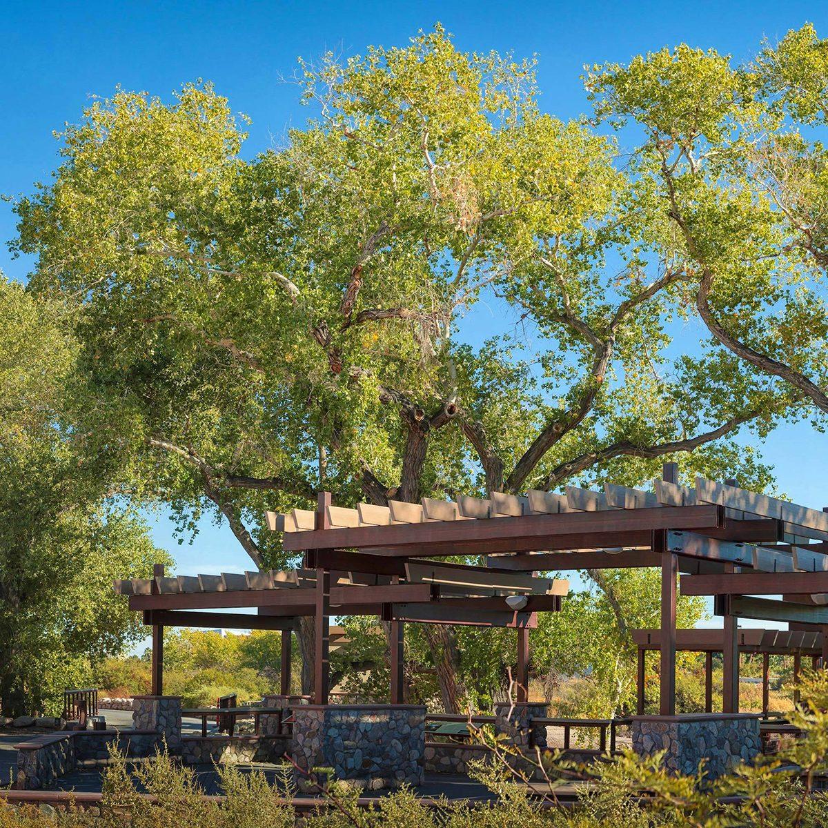 Nevada Springs Preserve