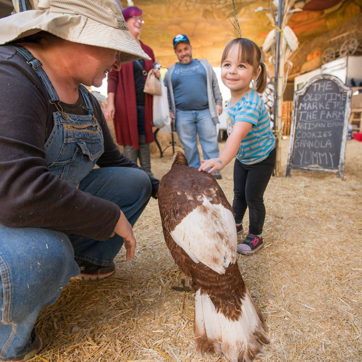 best farm tour nevada