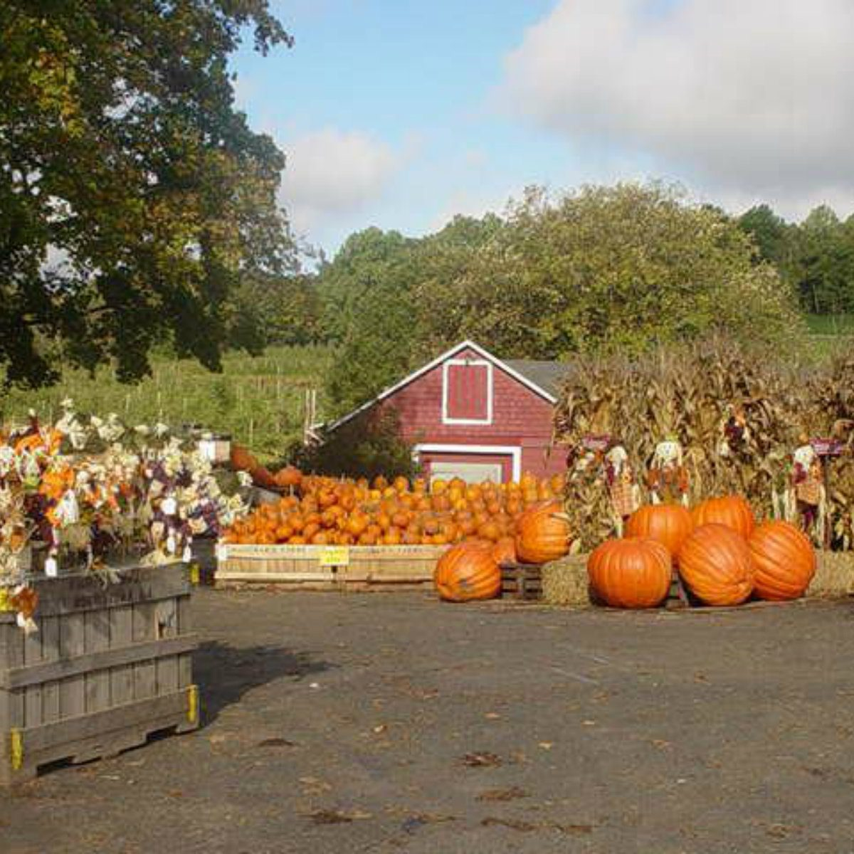 best farm tour new jersey
