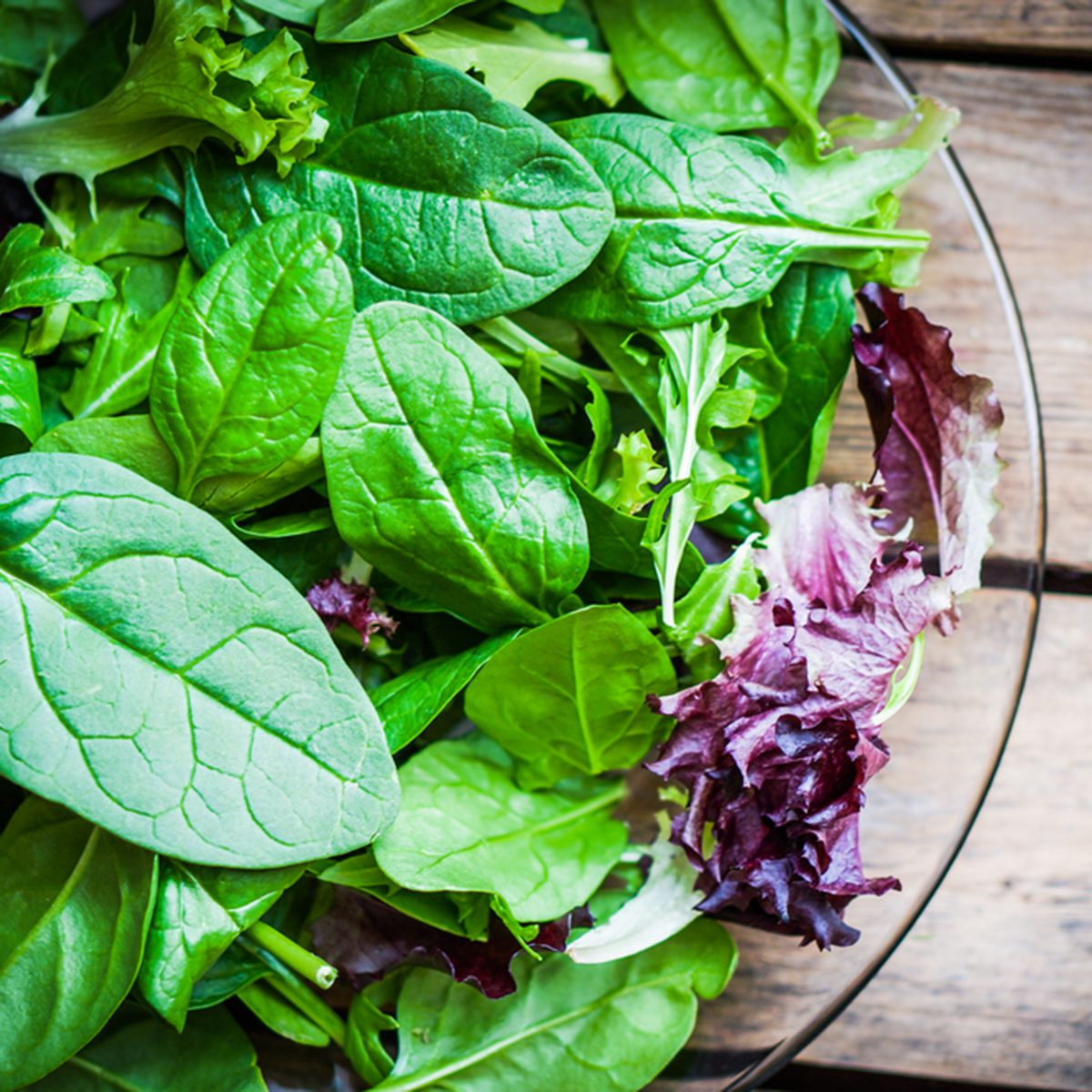 Fresh green salad with spinach,arugula,romaine and lettuce