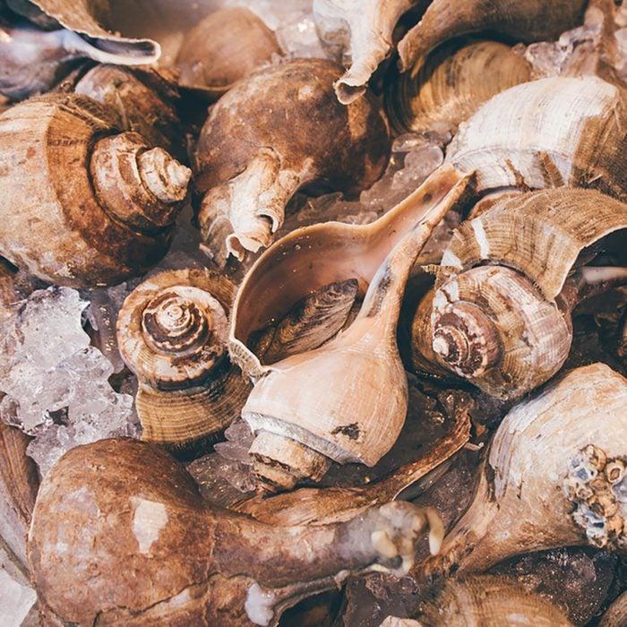 Whelks on ice in the Italian Market