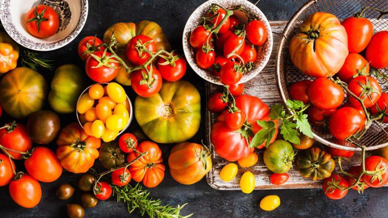 Tomatoes varieties colorful dark background.