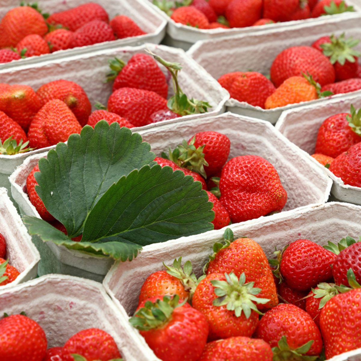 Close up red ripe fresh strawberry with green leaves in white cardboard paper crates on retail display of farmers market stall