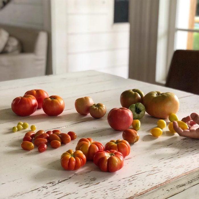 fresh tomatoes on table in farmhouse kitchen