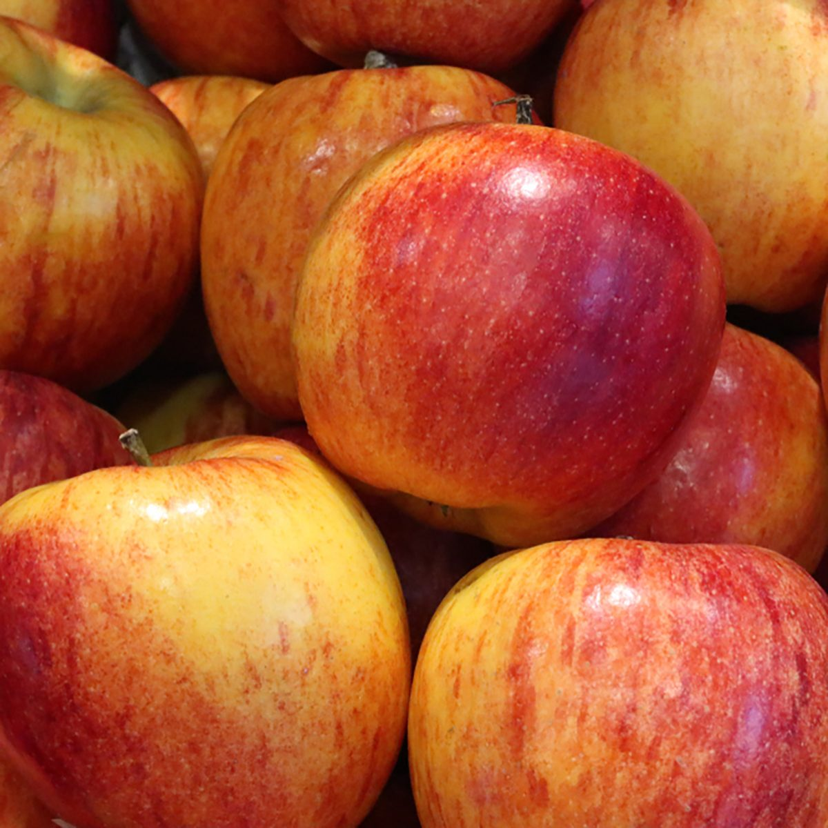 15 New Types of Apples You Should Be Buying | Taste of Home