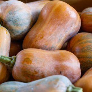 Everything You Need to Know About Honeynut Squash