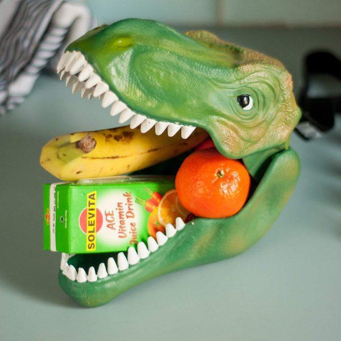 Dinosaur case