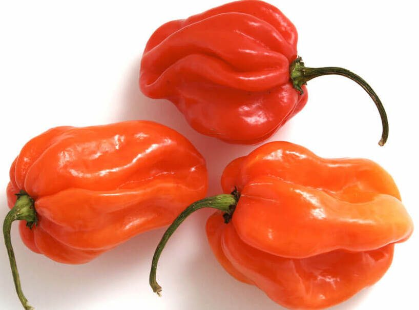 Your Guide to Peppers, from Sweet to Spicy   Taste of Home
