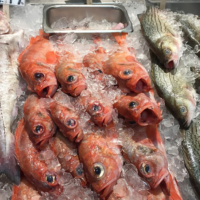 Display of three kinds of fresh fish on ice in a fish market in Portland, Maine