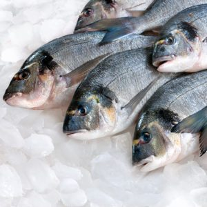 7 Secrets to Finding the Freshest Fish