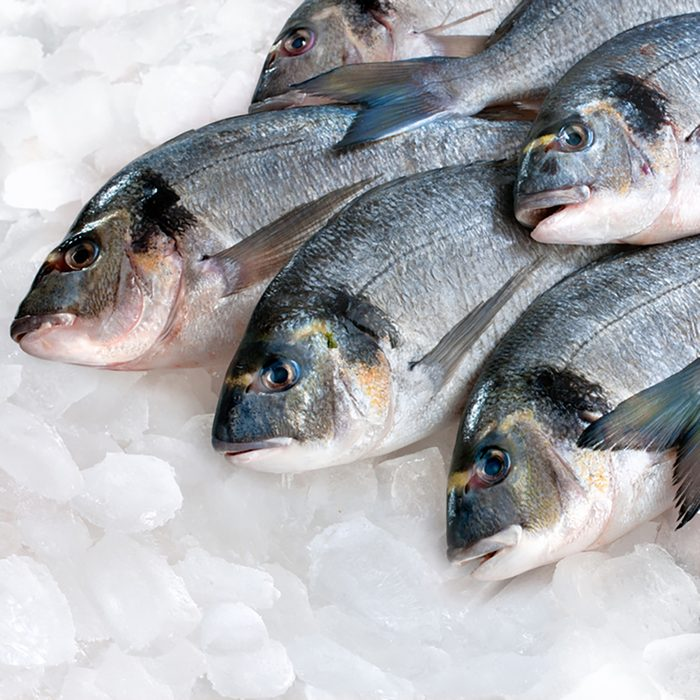 Gilthead bream (Sparus aurata) on ice at the seafood booth