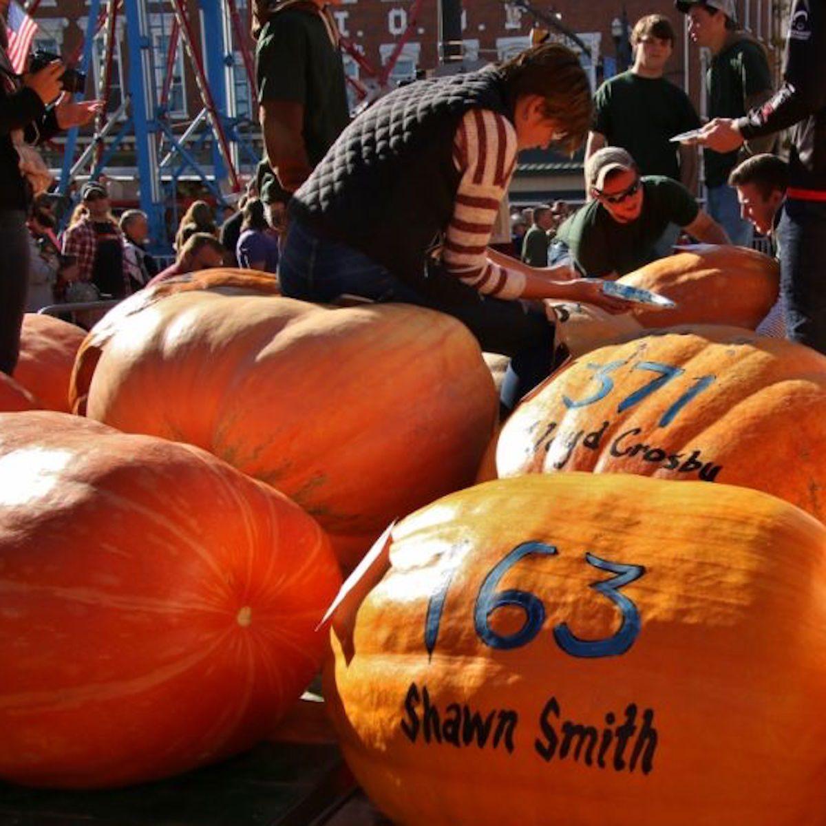 The Circleville Pumpkin Show