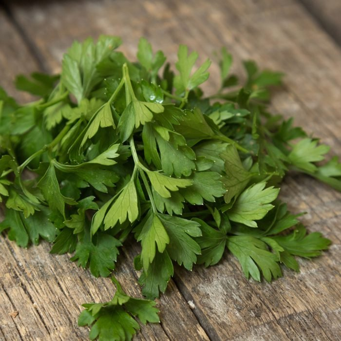 Green tops of parsley on a wooden background.