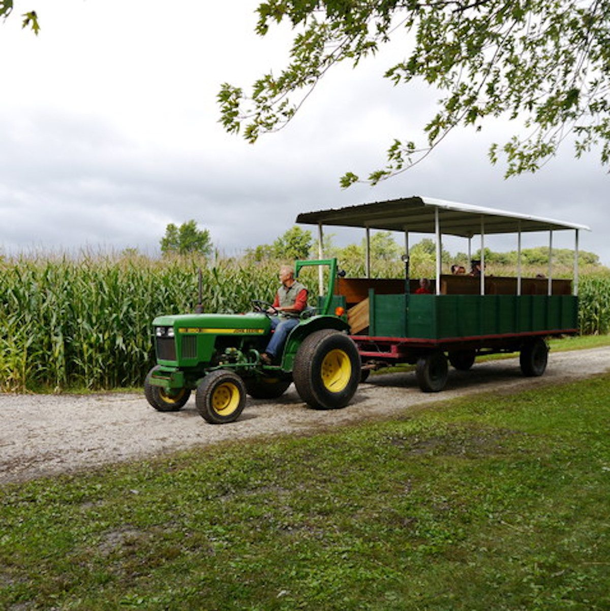 Kroll's Harvest Farm