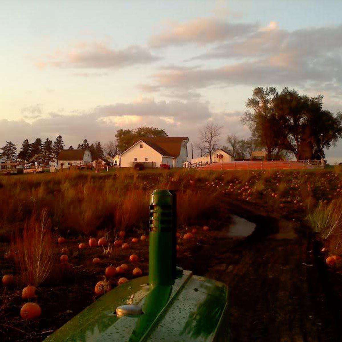 Uncle Bill's Farm