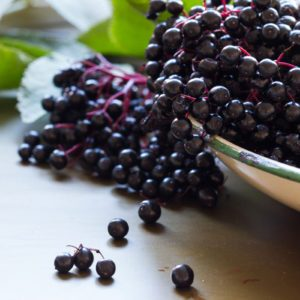 Black elderberries