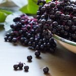What Is Elderberry and How Do I Cook with It?