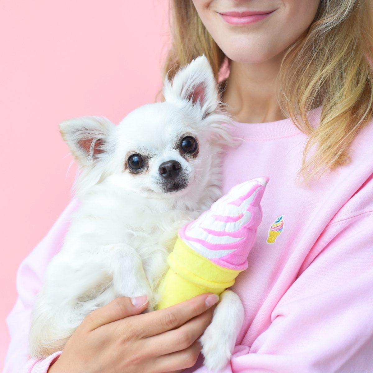 museum of ice cream ice cream cone dog toy