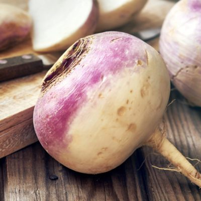 Closeup of raw organic turnips on rustic wooden background