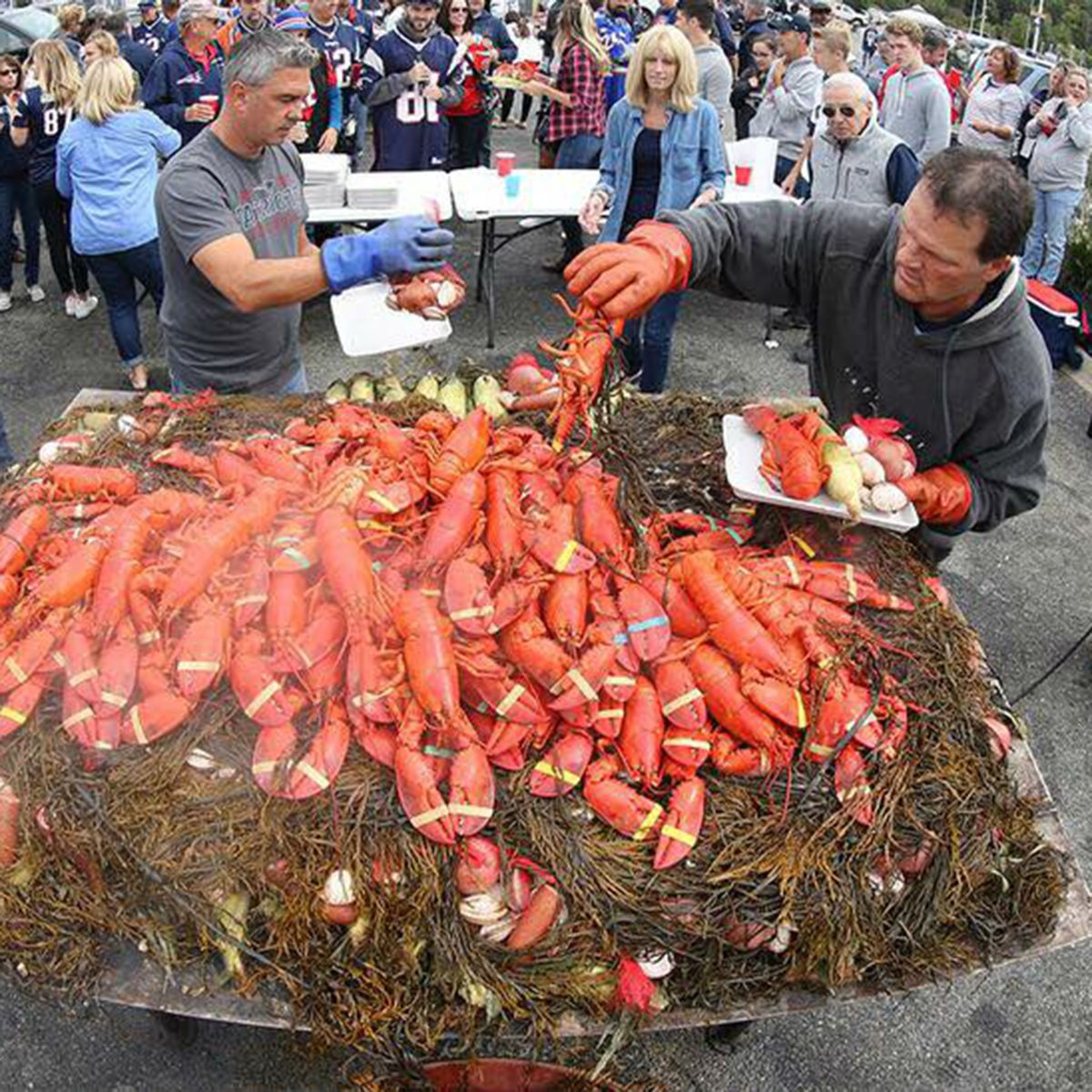 Fans grilling lobster