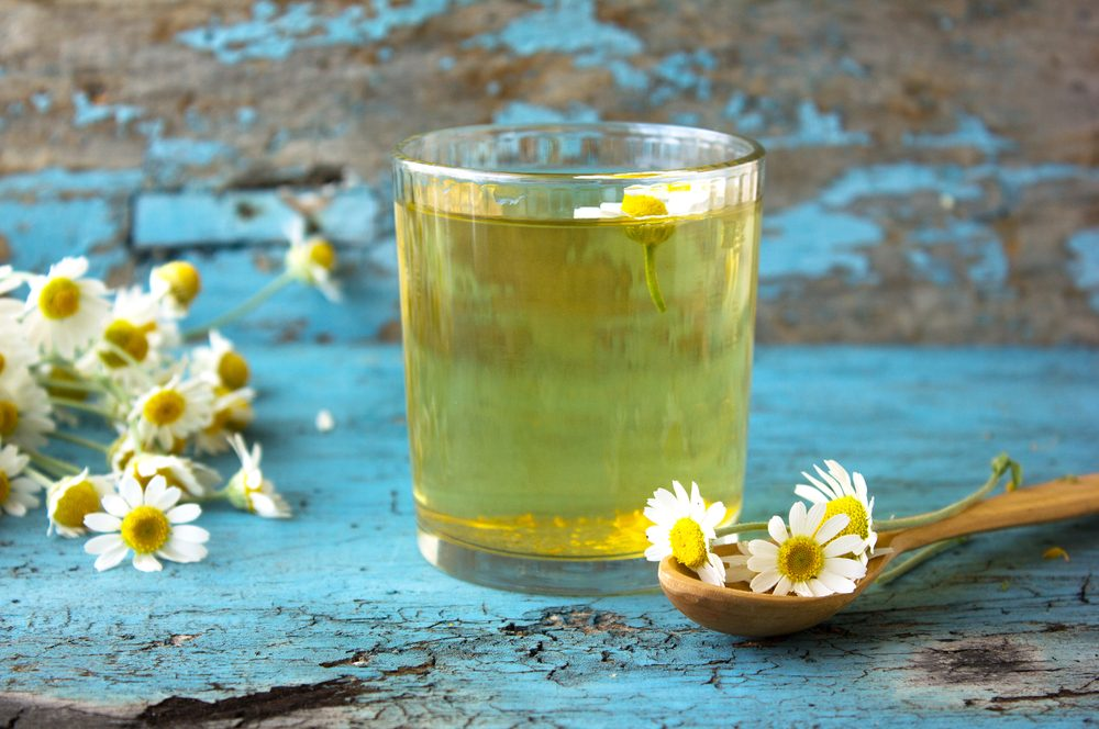 chamomile tea with flowers blue background