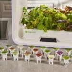 'Keurig For Plants' Runs Your Countertop Garden, No Skill Required