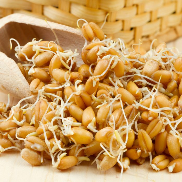 Sprouted wheat seeds Wooden scoop and basket on table