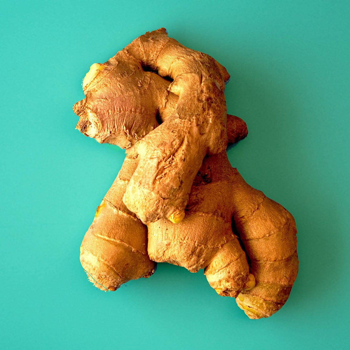 Raw ginger root in blue background.