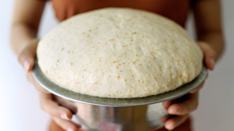 Female holding bowl of bread dough after 2 hours of proofing ; Shutterstock ID 1175142106; Job (TFH, TOH, RD, BNB, CWM, CM): TOH