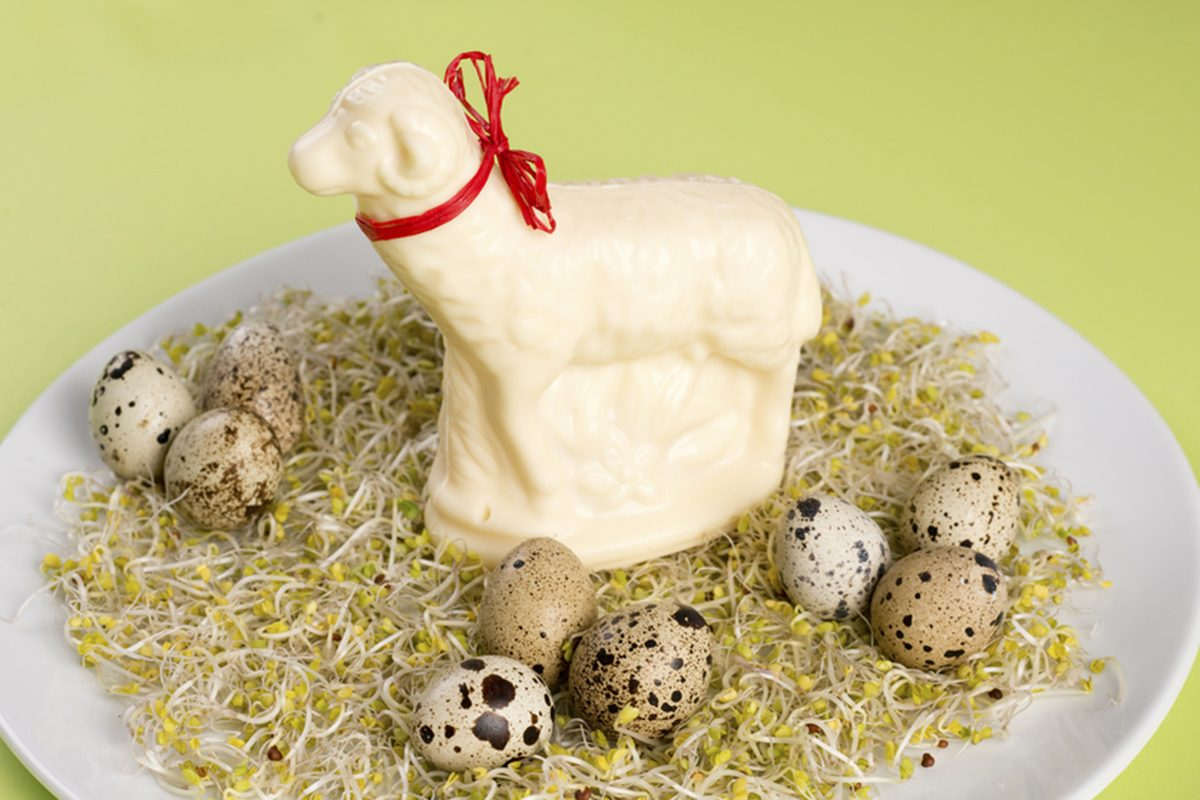 butter easter lamb on alfalfa sprouts with partridge eggs on white plate and green background