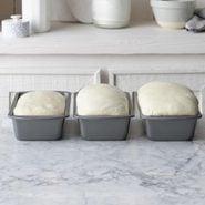 Proofing Bread Tohcom20 32480 B01 26 1b Preview
