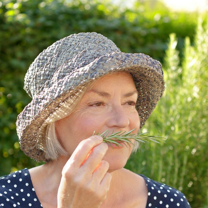 Senior woman in blue polka-dotted dress and straw hat sitting in her garden and enjoying the intense fragrance of her home grown rosemary; Shutterstock ID 629103527; Job (TFH, TOH, RD, BNB, CWM, CM): TOH