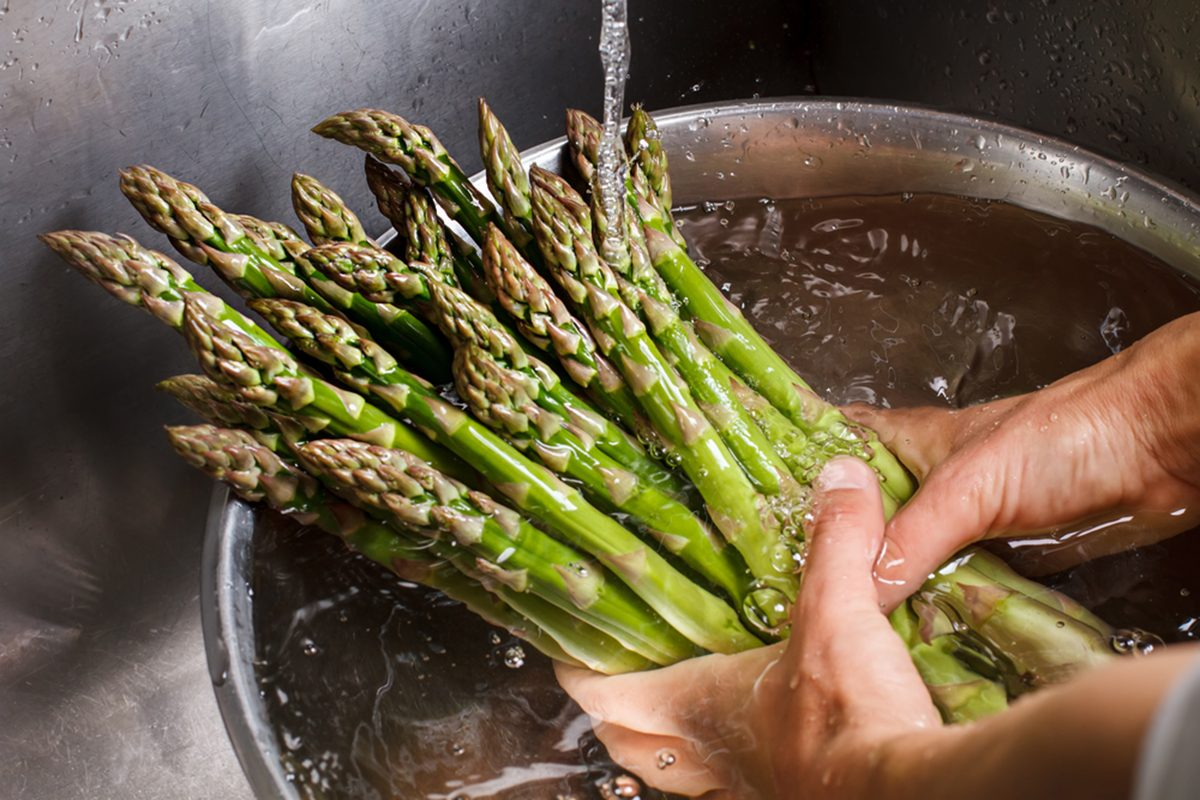 Man's hands washing asparagus.