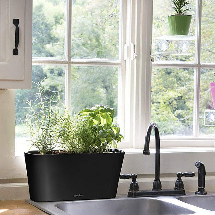 Self-watering planter box