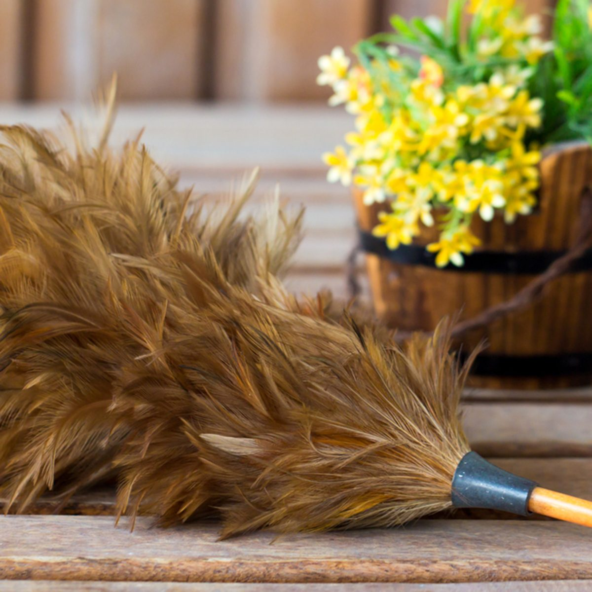 Feather duster on a table