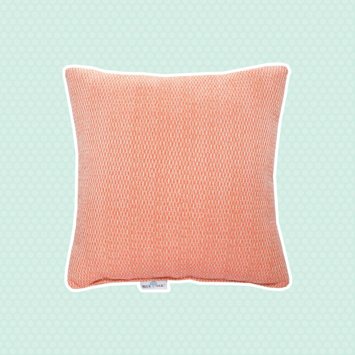 Coral Outdoor Pillow